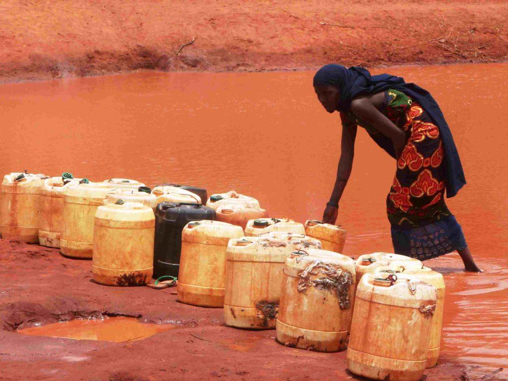 Cáritas con el Cuerno de África: Etiopía, Kenia, Somalia y Sudán del Sur.
