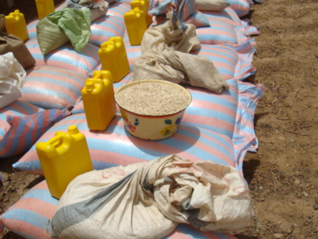 Sahel: Más de seis millones de personas se ven afectadas por la falta de alimentos