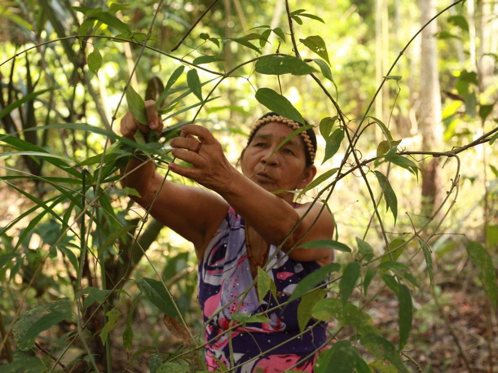 Cuidado del medio ambiente, justicia social y derechos humanos para proteger a las personas más vulnerables al cambio climático.