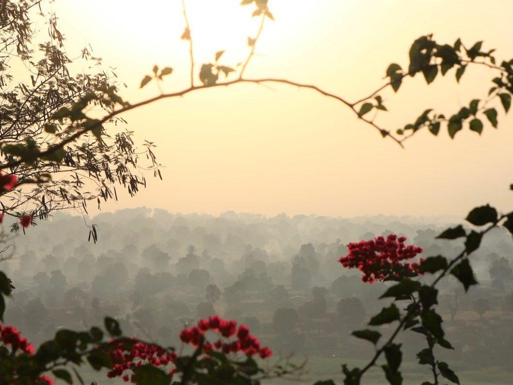 5º Aniversario de «Laudato si´»: Cáritas reafirma la llamada a «escuchar el clamor de los pobres y de la tierra»
