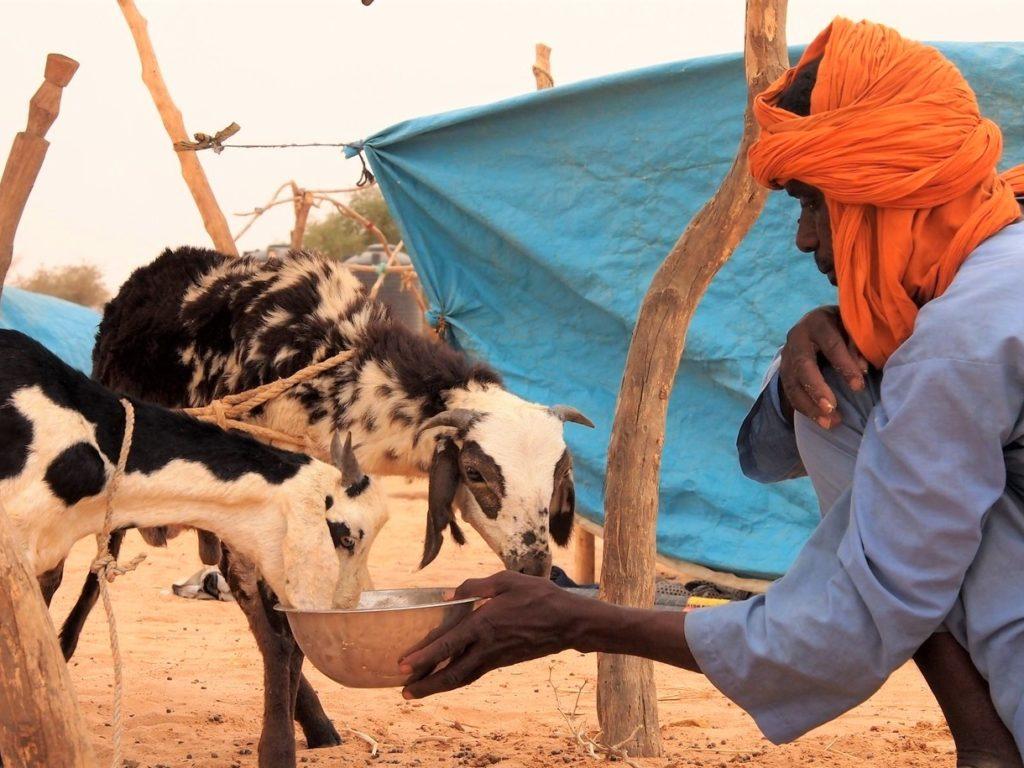 Cáritas alerta sobre la crisis climática que afecta al Sahel en África y al «corredor seco» en Centroamérica